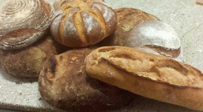 Horno San Bartolomé (Valencia) - Jesús Machí - Tipos de pan
