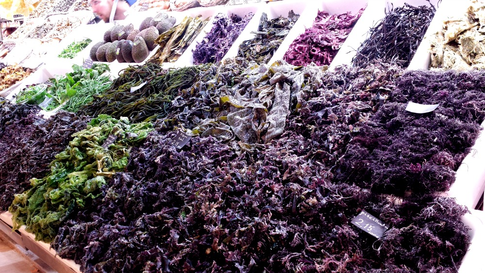 Algas en el Mercat de Russafa (Valencia)