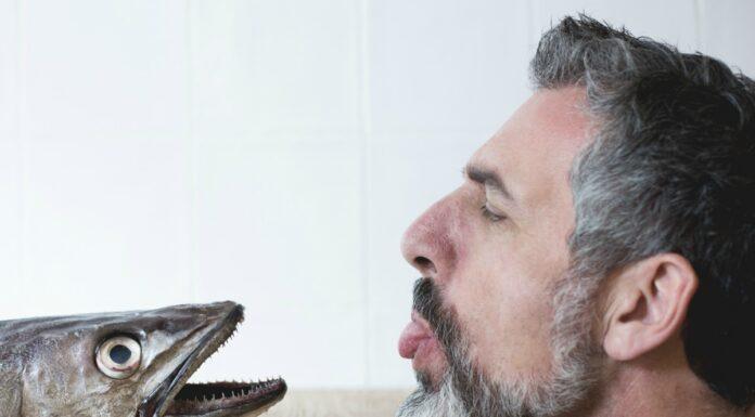 La cocina de Pepe Solla llega a Valencia con Atlántico Casa de Petiscos