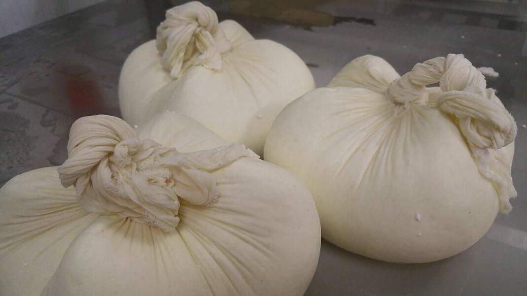 La Majada Quesos celebra su primer aniversario con la apertura del queso de servilleta más grande del país